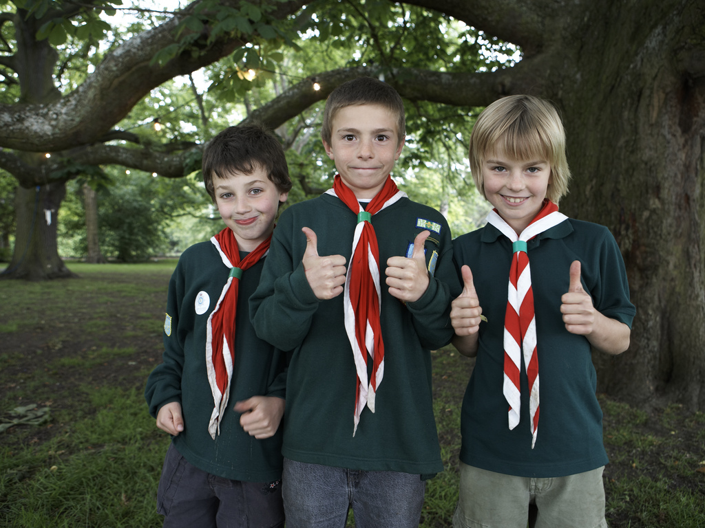3 Scouts
